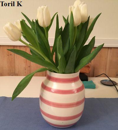 220117_tulipaner3